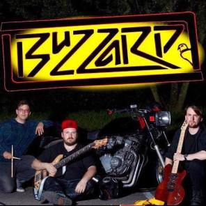 Buzzard band photo