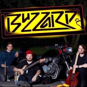 Buzzard band photo
